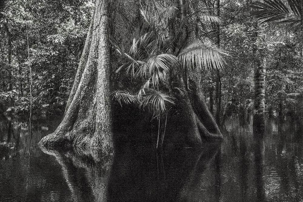 Legenda: Fotografia da séria Viagem Pitoresca pelo Brasil, de Cássio Vasconcellos