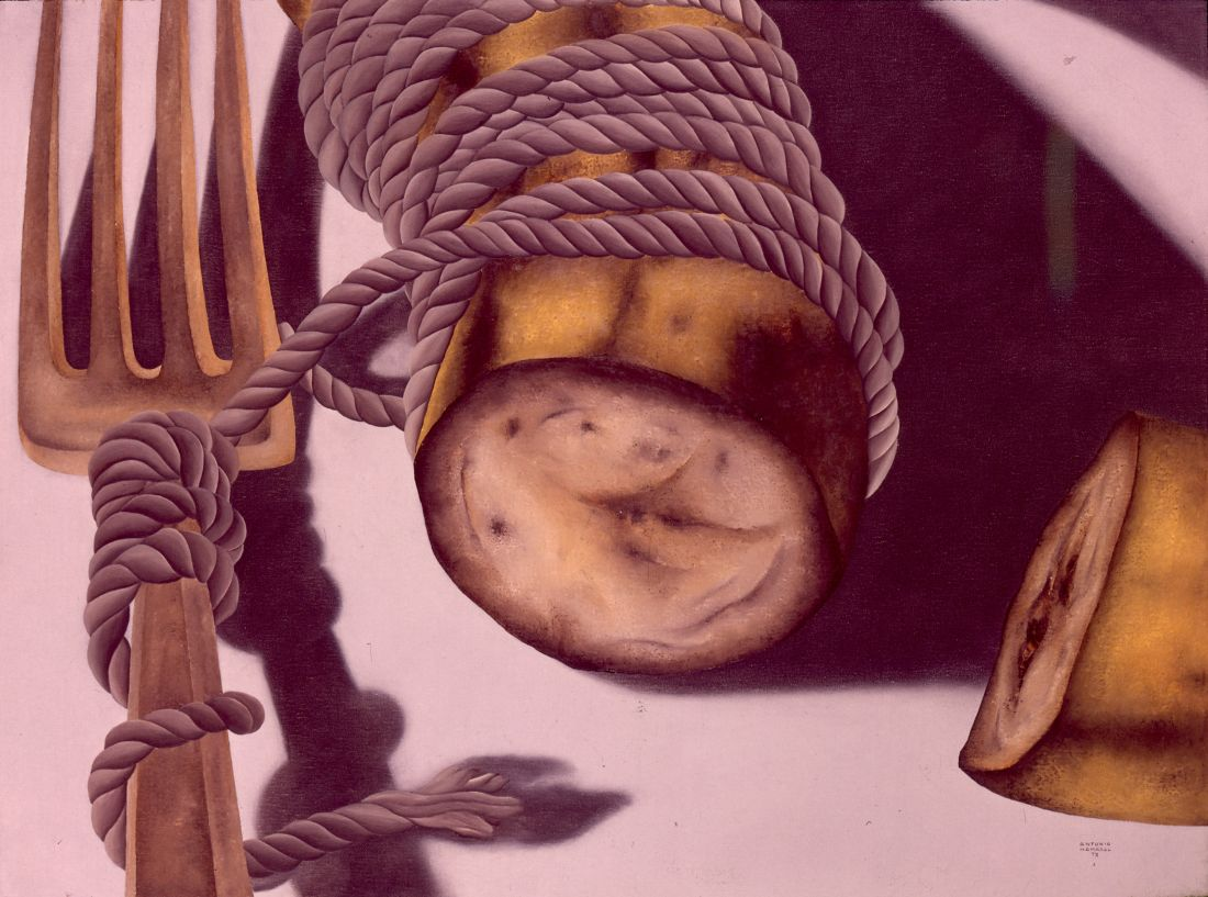 Pintura da série Campo de Batalha (1973), de Antonio Henrique Amaral, realizadas durante exílio do artista em Nova York (Fotos: Cortesia Mariana Amaral)