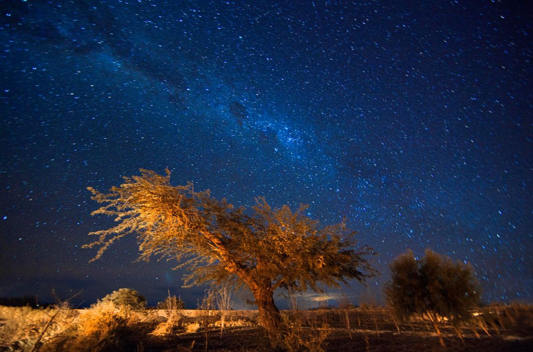 Juliana Lewkowicz - Atacama 11 (Foto: Cortesia ArtEEdições)