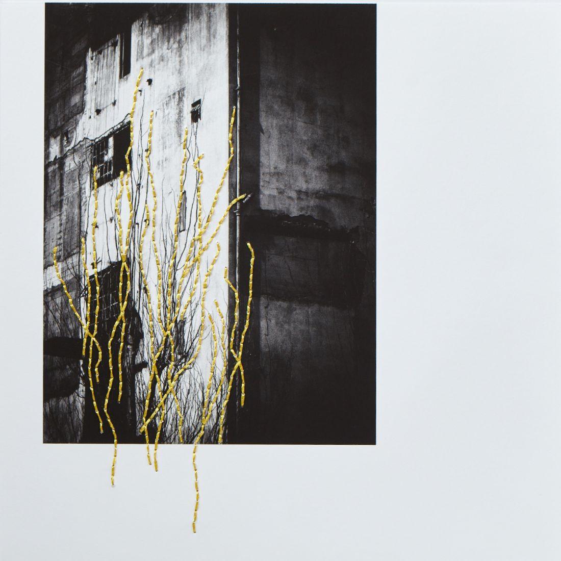 Mari Queiroz - Da série Solitude (Foto: Mari Queiroz/Cortesia Biographica Arte Contemporânea)