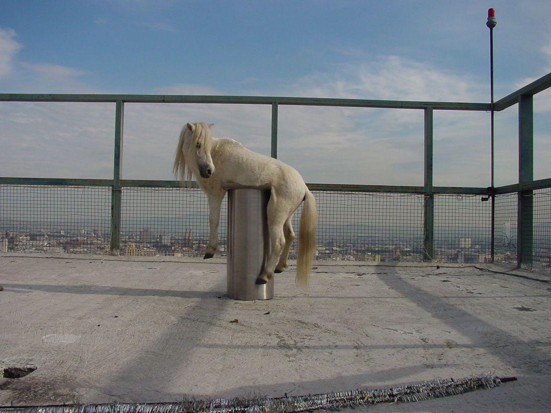 Anri Sala - No Barragán No Cry, 2002 (Foto: Cortesia Hauser & Wirth/Galerie Chantal Crousel)