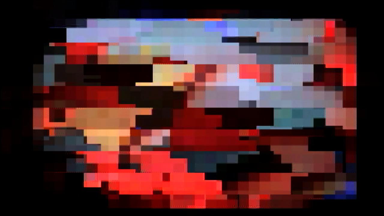 dvd_videoexperimental_tomieohtake02