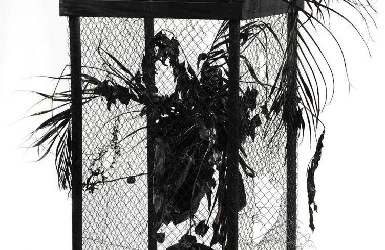 Plantas, da série Plantas da Tia Andréa, de Gabriel Pitan Garcia (Foto: Divulgação)
