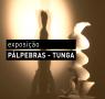 quadrado_expo_tunga