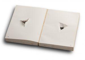 Balada, livro Perfurado com bala calibre 38, de Nuno Ramos (Foto: Iara Venanzi, Itaú Cultural)
