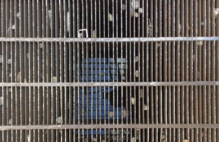 Imagem de referência usada pela artista Cinthia Marcelle para sua instalação Chão de Caça (Foto: Cinthia Marcelle)