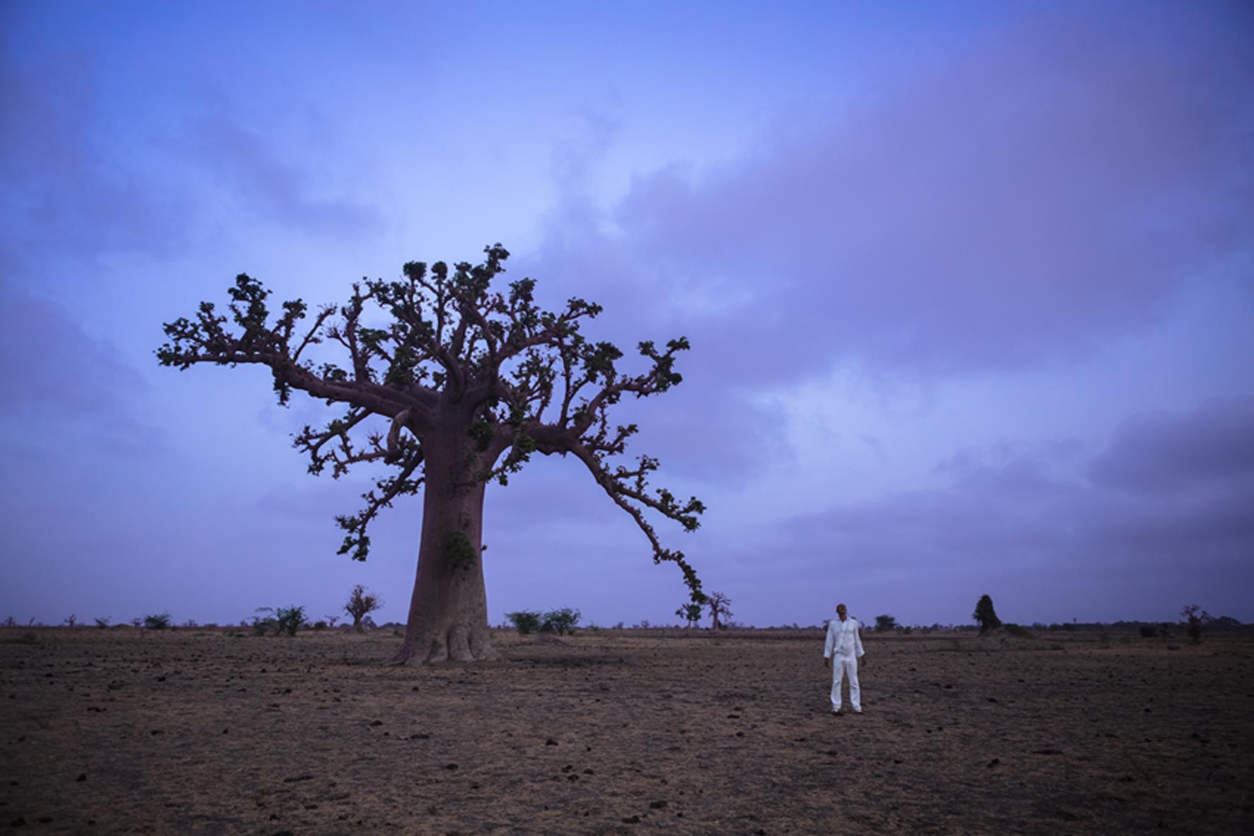 Ayrson Heráclito_História do Futuro- Baobá- o capítulo da agromancia_2014_da série Mitologias Africanas_Blau Projects.jpg.meno